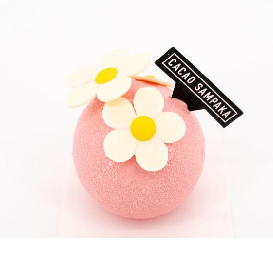 Cacao Sampaka迷你蛋糕 CR-89246