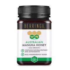 Berringa - 澳洲麥蘆卡蜂蜜 MGO120+ 特強抗菌 日常使用 (500克) BEBE003