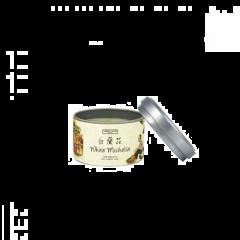Carroll&Chan - 白蘭花罐裝蜂蠟蠟燭套裝 C_14_WHI-MICHELI