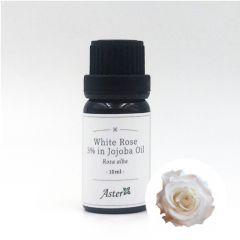 Aster Aroma 3% White Rose Pure Essential Oil (Rosa alba) in Organic Jojoba Oil (Simmondsia chinensis) - 10ml CL-020650010