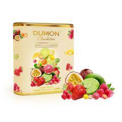 DUMON Chocolatier - 雜果乳酪朱古力脆球 DD51T150
