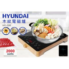 Hyundai - 2000W Induction Cooker - HY-G16 HY-G16