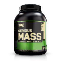 Optimum Nutrition Serious Mass Gainer 6lbs - Vanilla ONSMGMGPVAN6LBS