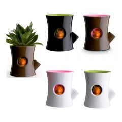 QUALY - Log And Squirrel -Self Watering Plant Pot(5 colors option) QL10075-MO