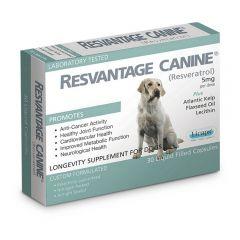 ResveratrolCanine Resvantage - 維蘆醇 白藜蘆醇 (狗用) 30粒裝