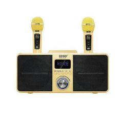 SDRD - Karaok Portable Speaker Bluetooth Karaoke SD-309 (2 Colors) SDRD_SD309_M