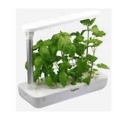 VegeBox - T BOX Indoor Hydroponic Garden