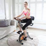 EnerGym X-Bike Prime至尊健身單車 (灰色) FIT216