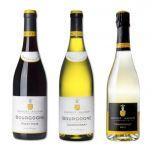 Doudet Naudin - Bourgogne Pinot Noir + Bourgogne Chardonnay + Chardonnay Brut N.V. (Sparkling)(連 Vin Bouquet Wine Decanter FIA 166 x 1 個) PW_DoudetNaudin