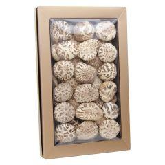 南北行 - 特級厚身天白花菇皇禮盒