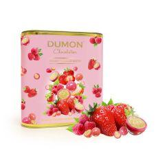 DUMON Chocolatier - Berries Yogurt Chocolate Crisps DD52T150