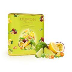 DUMON Chocolatier - Tropical Fruits Yogurt Chocolate Crisps DD53T150