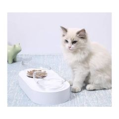 PETKIT - Fresh Nano可調角度貓碗(雙碗) DM18122018036
